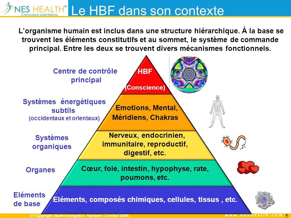 Le HBF dans son contexte