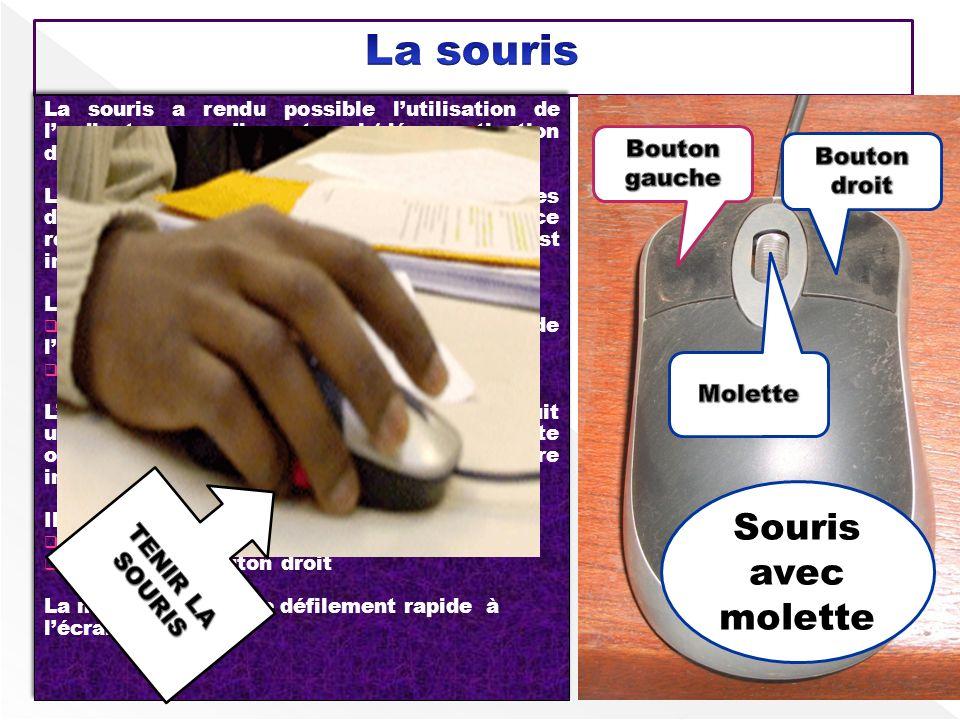 La souris Souris avec molette Bouton gauche Bouton droit Molette