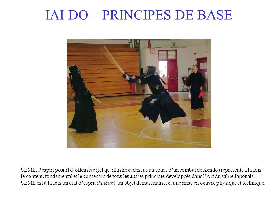 IAI DO – PRINCIPES DE BASE