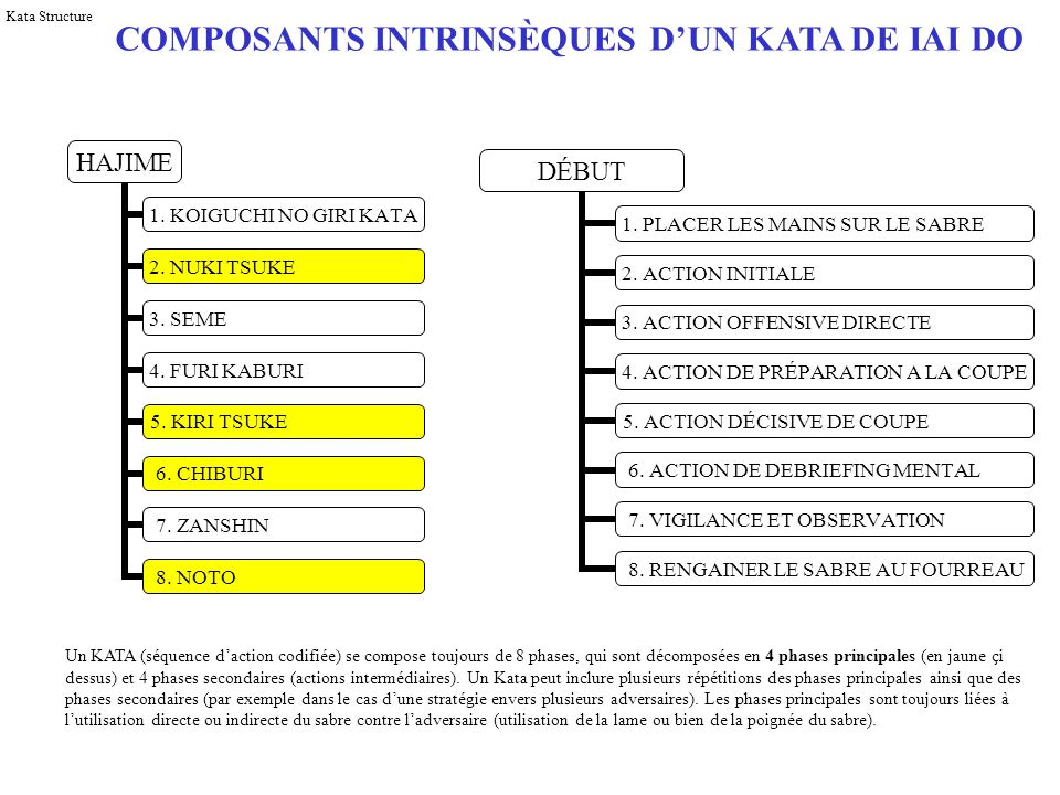 COMPOSANTS INTRINSÈQUES D'UN KATA DE IAI DO