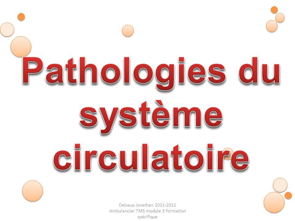 Pathologies du système circulatoire