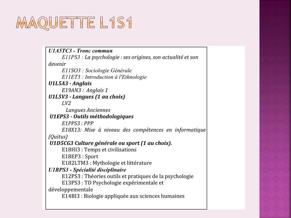 Maquette L1S1