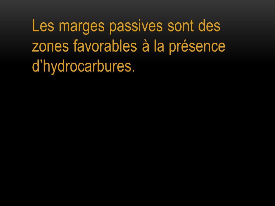 Les marges passives sont des zones favorables à la présence d'hydrocarbures.