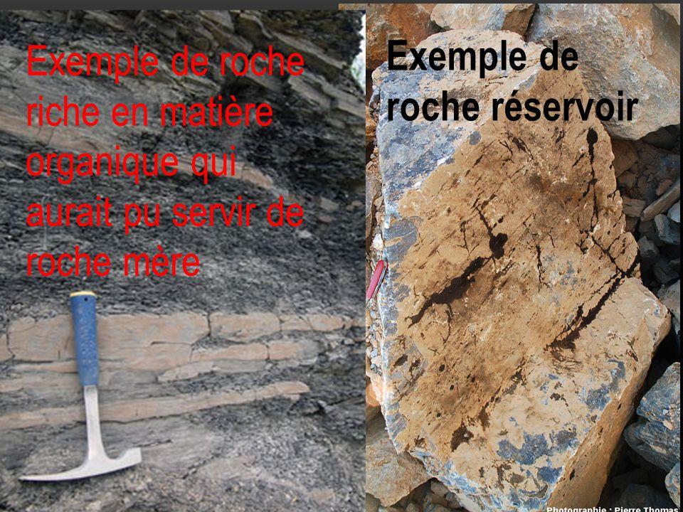 Exemple de roche réservoir