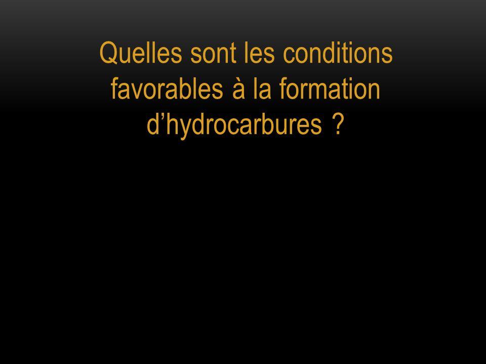 Quelles sont les conditions favorables à la formation d'hydrocarbures