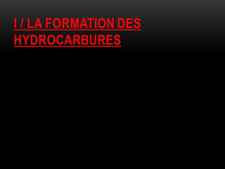 I / LA FORMATION DES HYDROCARBURES