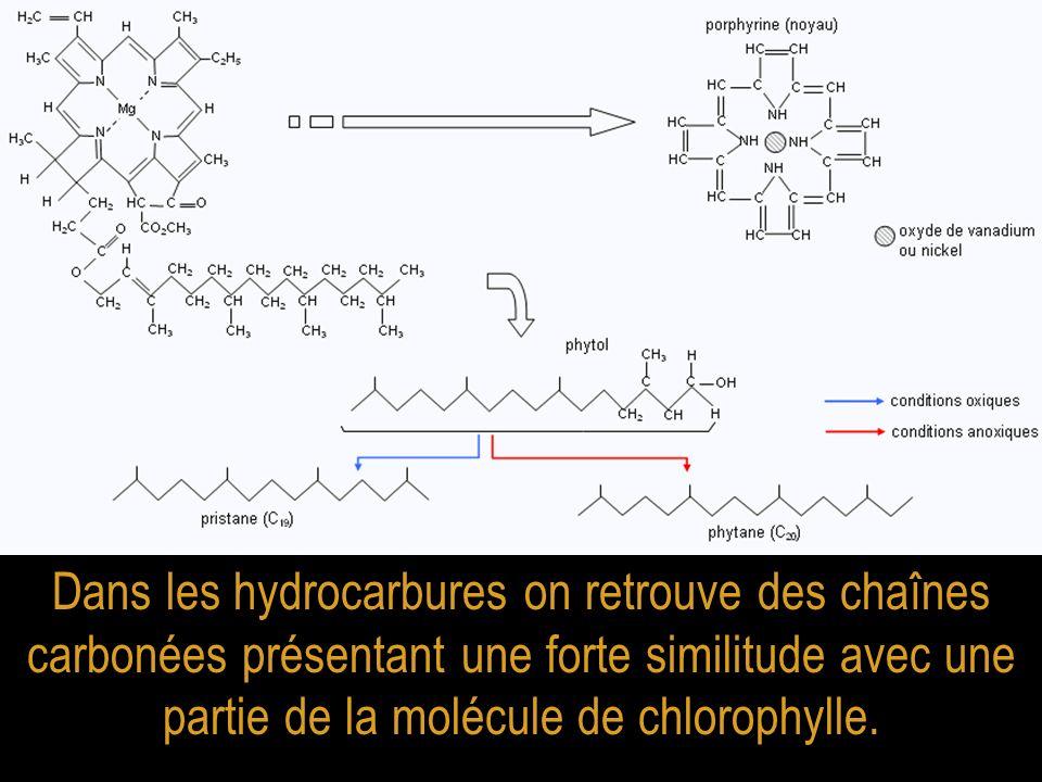 Dans les hydrocarbures on retrouve des chaînes carbonées présentant une forte similitude avec une partie de la molécule de chlorophylle.