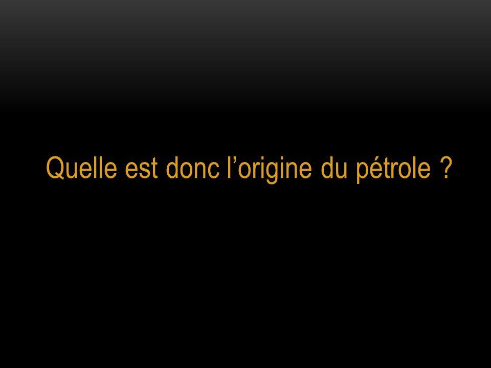 Quelle est donc l'origine du pétrole