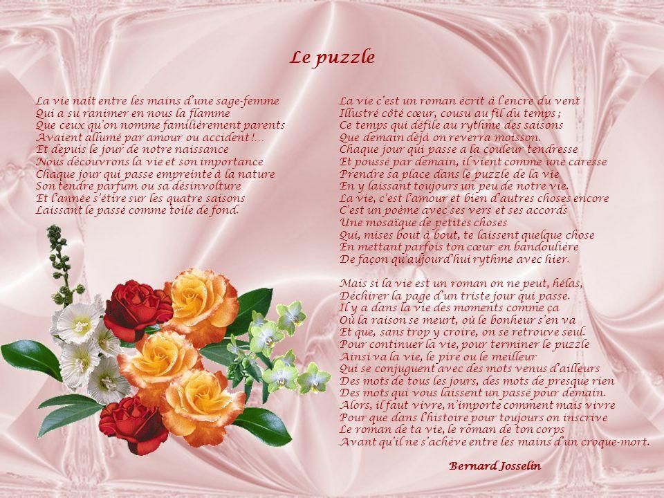 Le puzzle La vie naît entre les mains d'une sage-femme