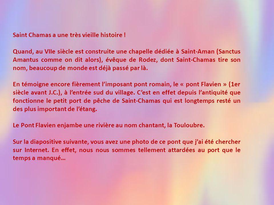 Saint Chamas a une très vieille histoire !