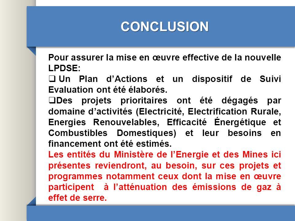 CONCLUSION Pour assurer la mise en œuvre effective de la nouvelle LPDSE: Un Plan d'Actions et un dispositif de Suivi Evaluation ont été élaborés.