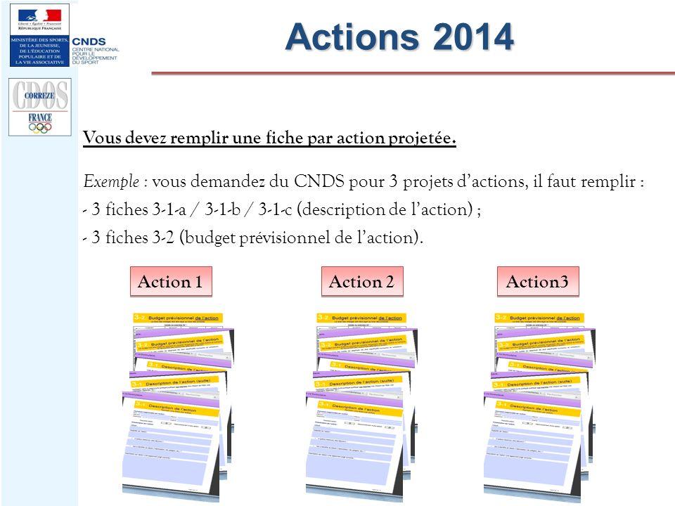 Actions 2014 Vous devez remplir une fiche par action projetée.