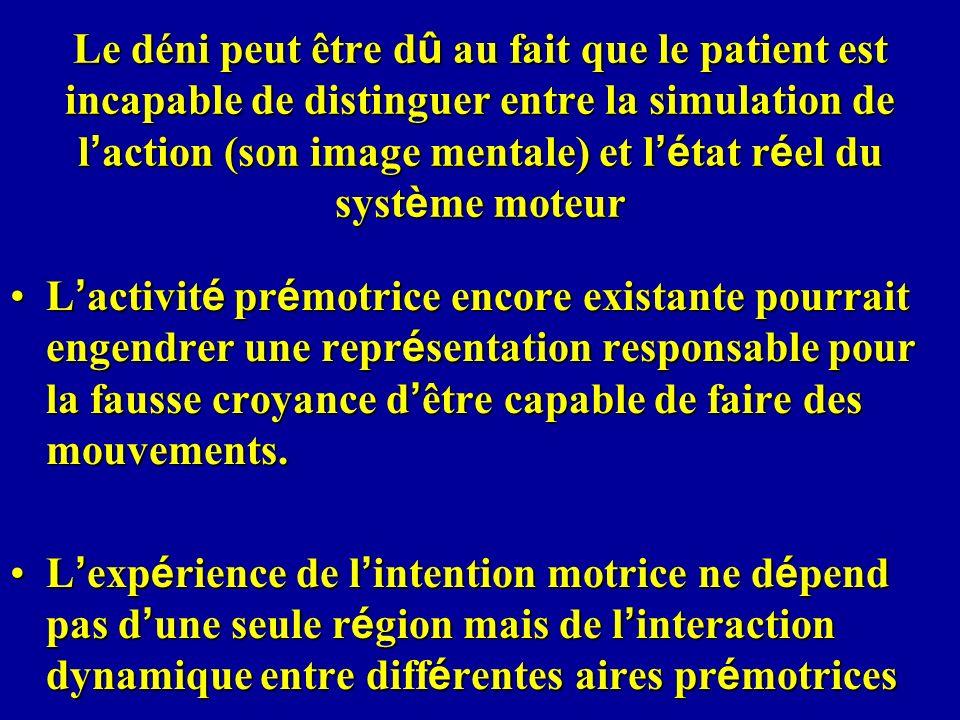 Le déni peut être dû au fait que le patient est incapable de distinguer entre la simulation de l'action (son image mentale) et l'état réel du système moteur