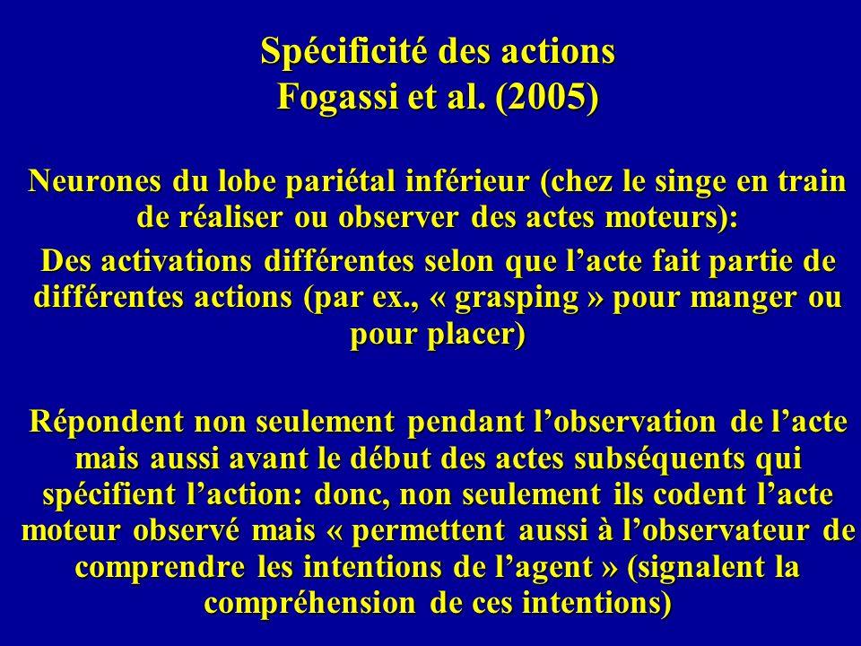 Spécificité des actions Fogassi et al. (2005)