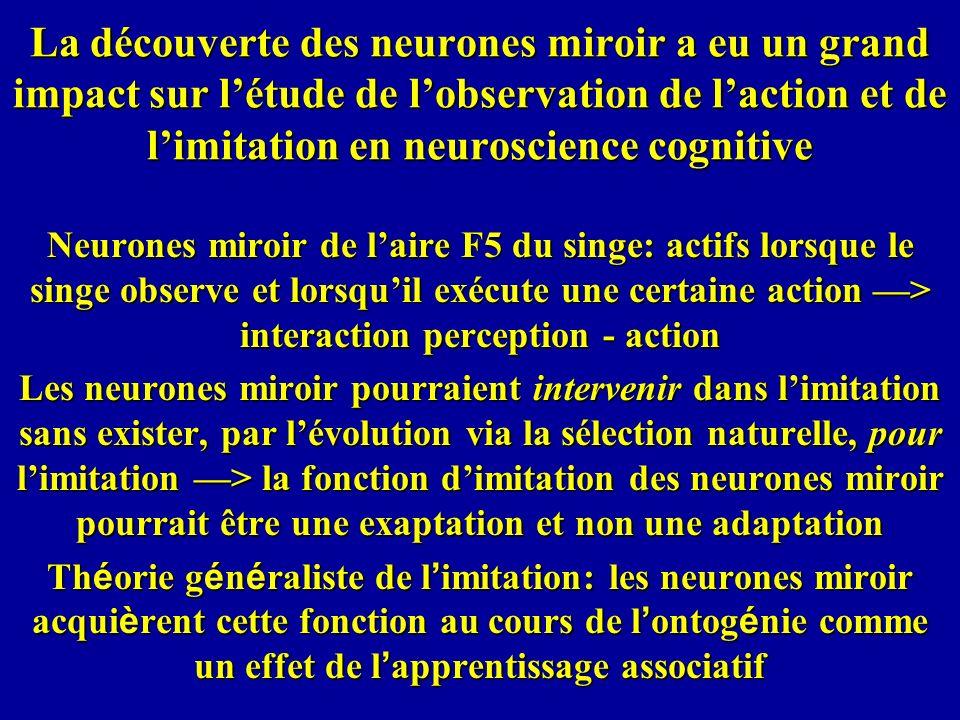 La découverte des neurones miroir a eu un grand impact sur l'étude de l'observation de l'action et de l'imitation en neuroscience cognitive