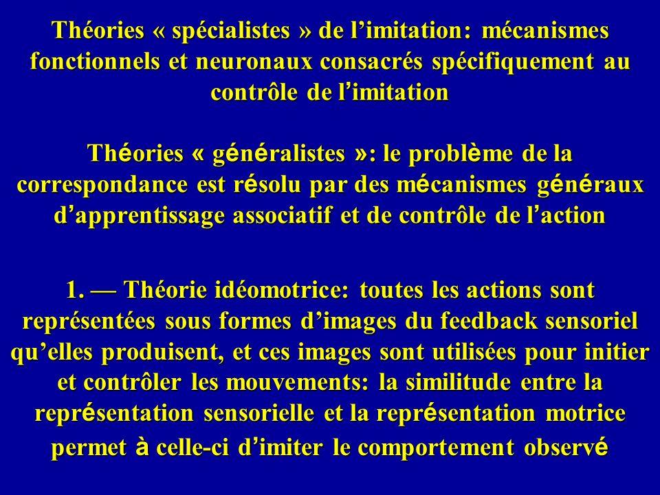 Théories « spécialistes » de l'imitation: mécanismes fonctionnels et neuronaux consacrés spécifiquement au contrôle de l'imitation Théories « généralistes »: le problème de la correspondance est résolu par des mécanismes généraux d'apprentissage associatif et de contrôle de l'action