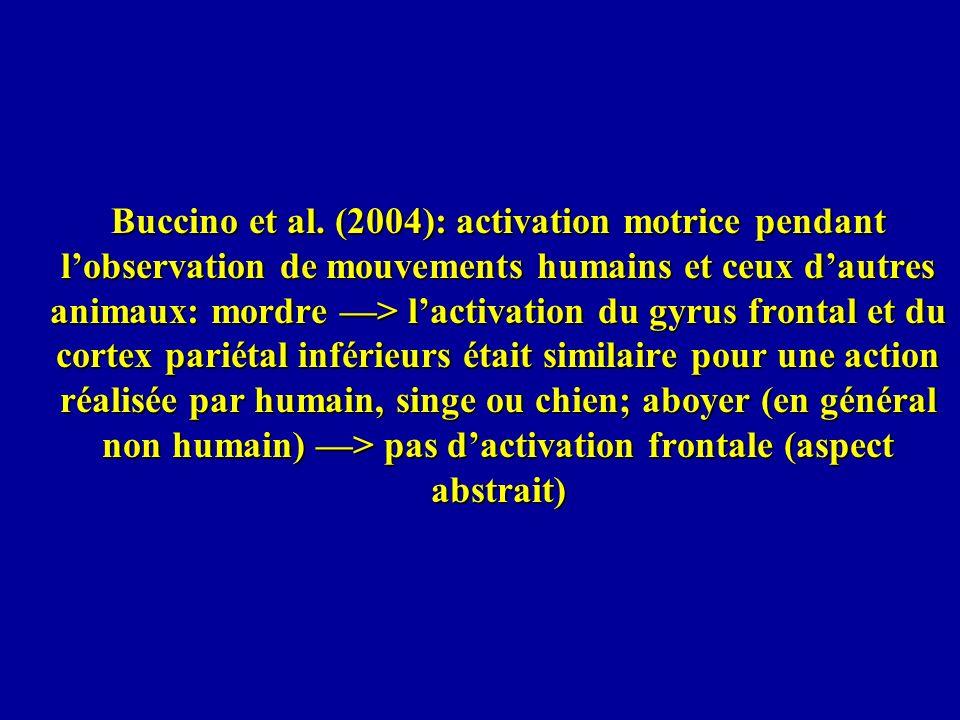 Buccino et al.