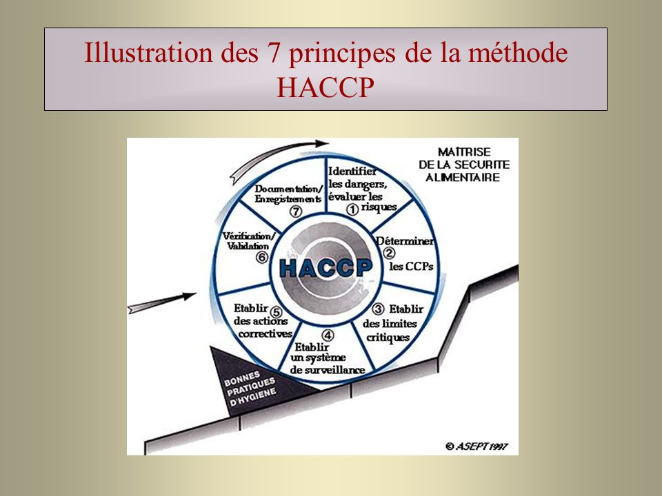 Illustration des 7 principes de la méthode HACCP