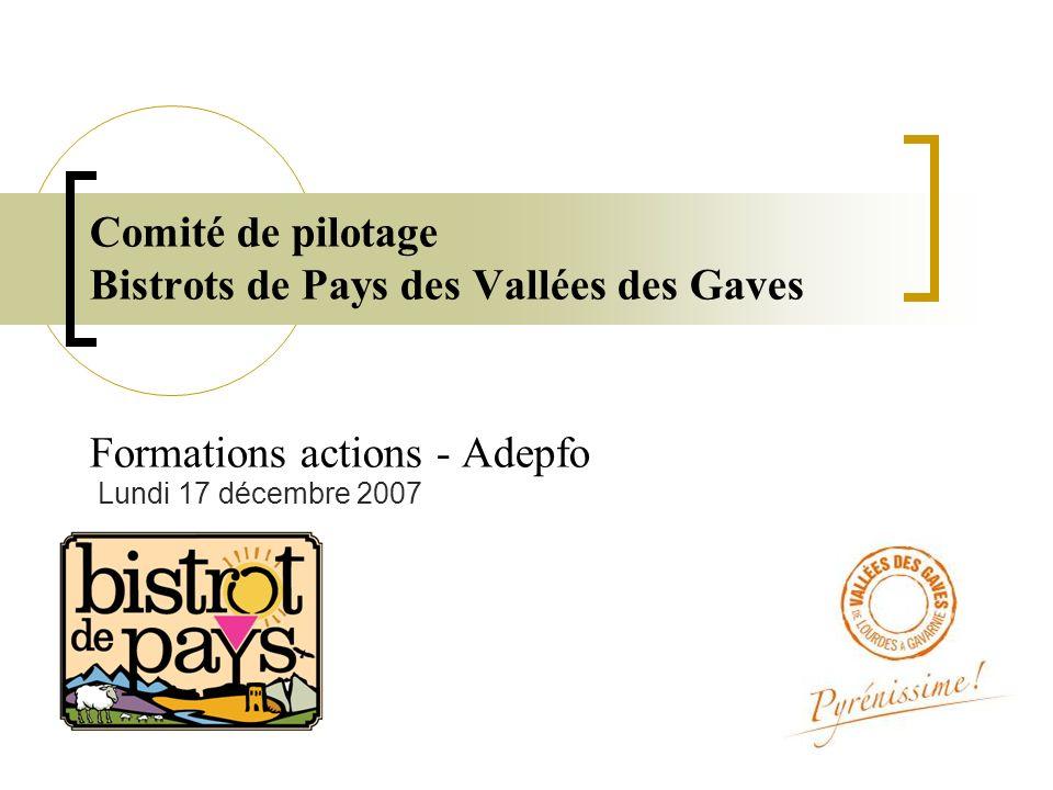 Comité de pilotage Bistrots de Pays des Vallées des Gaves Formations actions - Adepfo