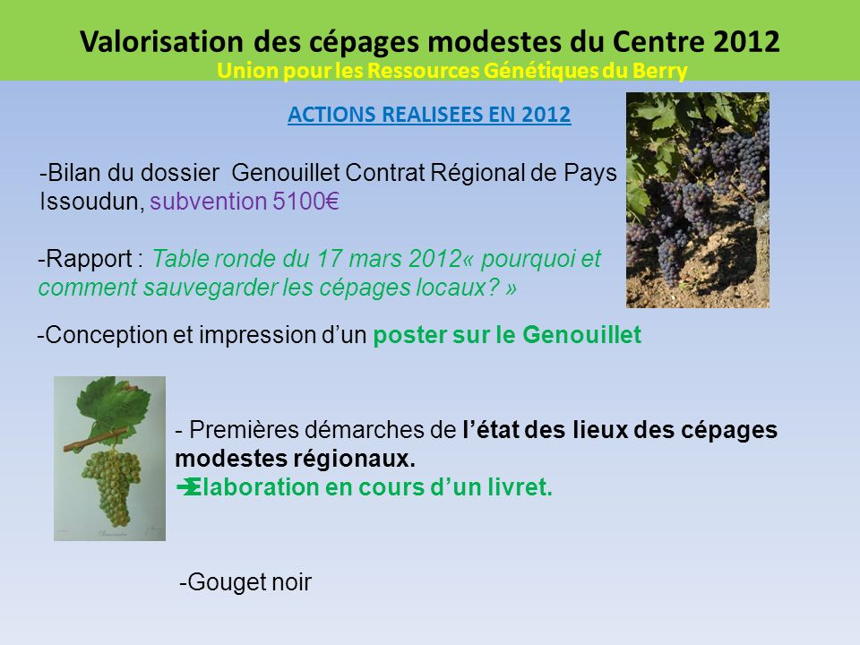 Valorisation des cépages modestes du Centre 2012