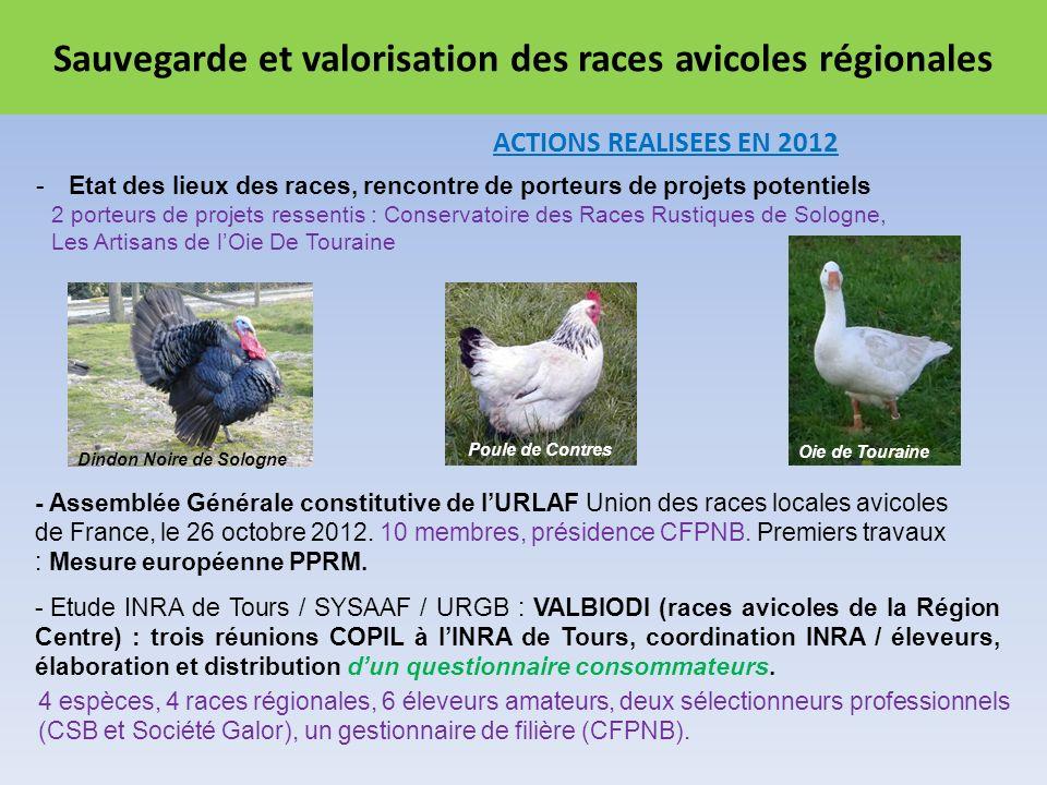 Sauvegarde et valorisation des races avicoles régionales