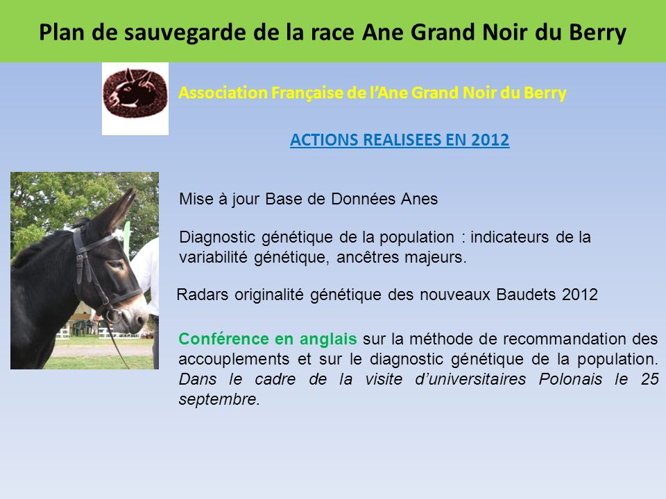 Plan de sauvegarde de la race Ane Grand Noir du Berry