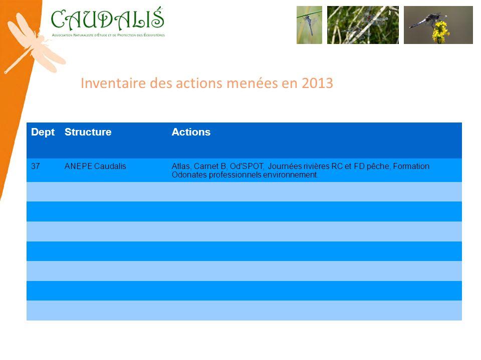 Inventaire des actions menées en 2013