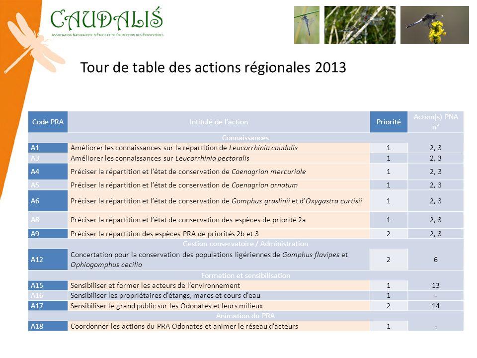 Tour de table des actions régionales 2013