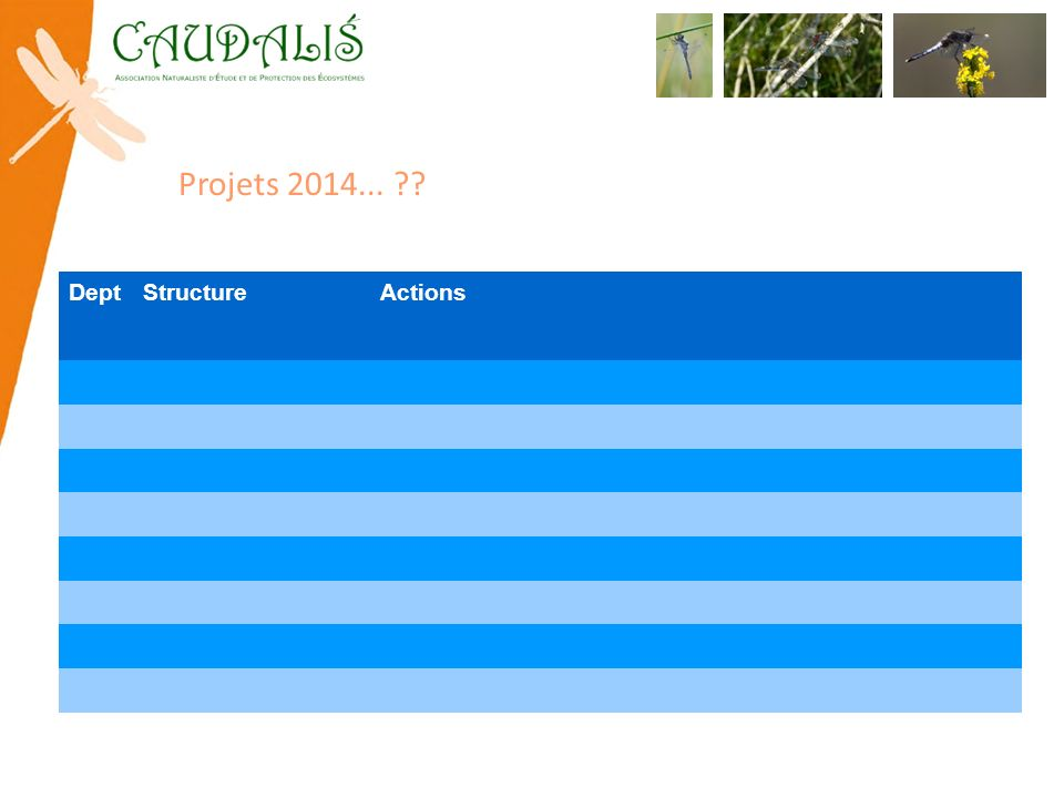 Projets 2014... Dept Structure Actions