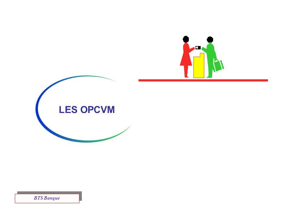 LES OPCVM BTS Banque