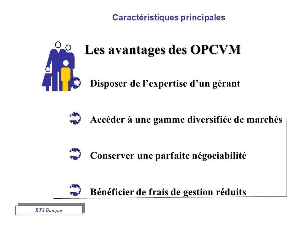 Caractéristiques principales Les avantages des OPCVM