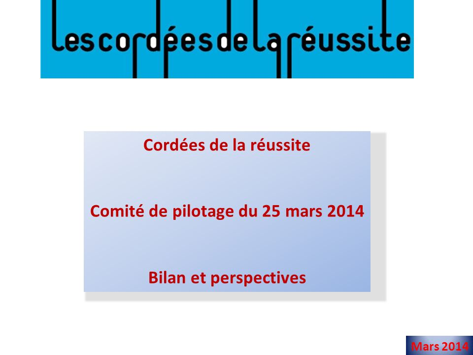 Comité de pilotage du 25 mars 2014