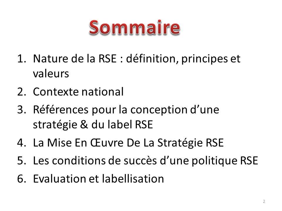 Sommaire Nature de la RSE : définition, principes et valeurs