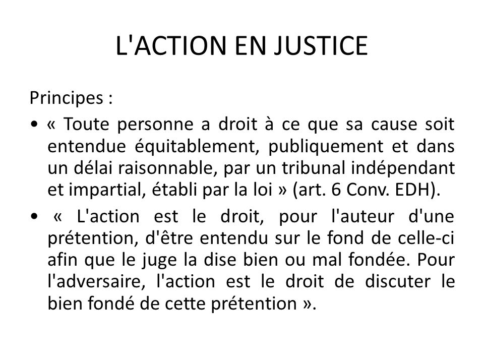 L ACTION EN JUSTICE
