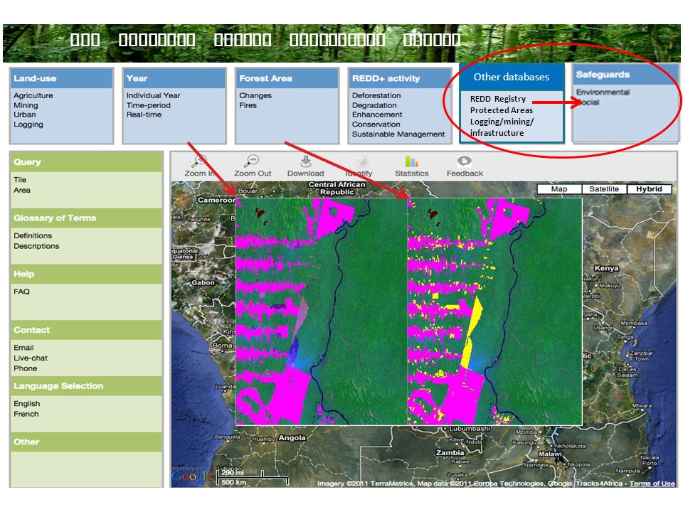 What could it look like DRC NATIONAL FOREST MONITORING SYSTEM