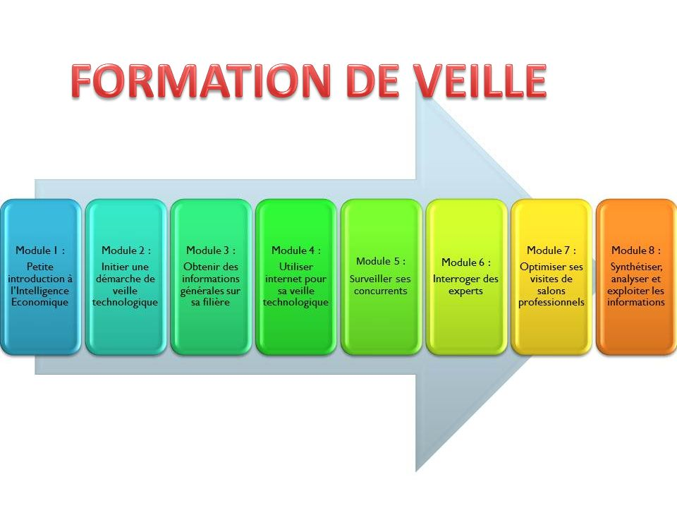 FORMATION DE VEILLE