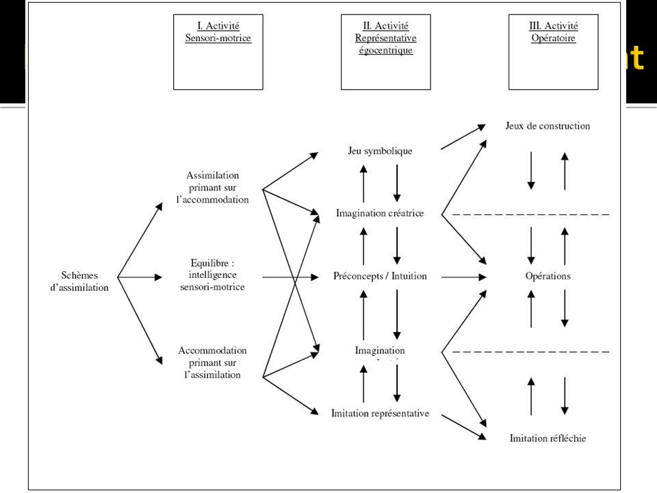 Piaget et les stades de développement