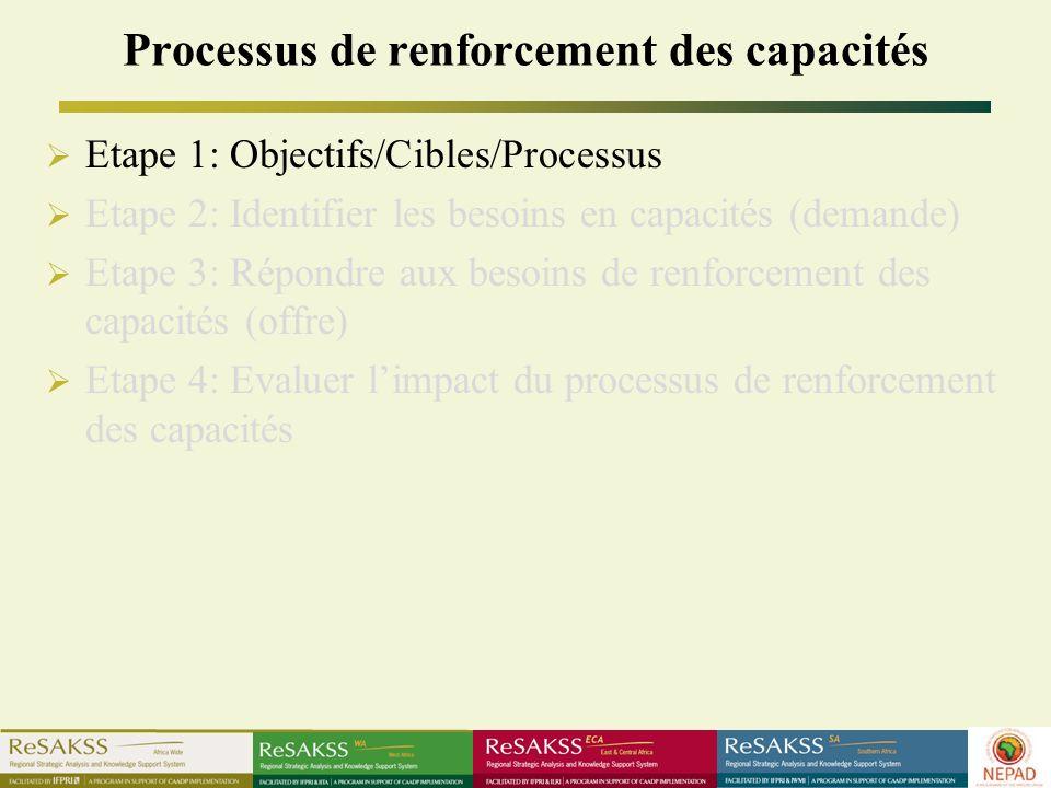 Processus de renforcement des capacités