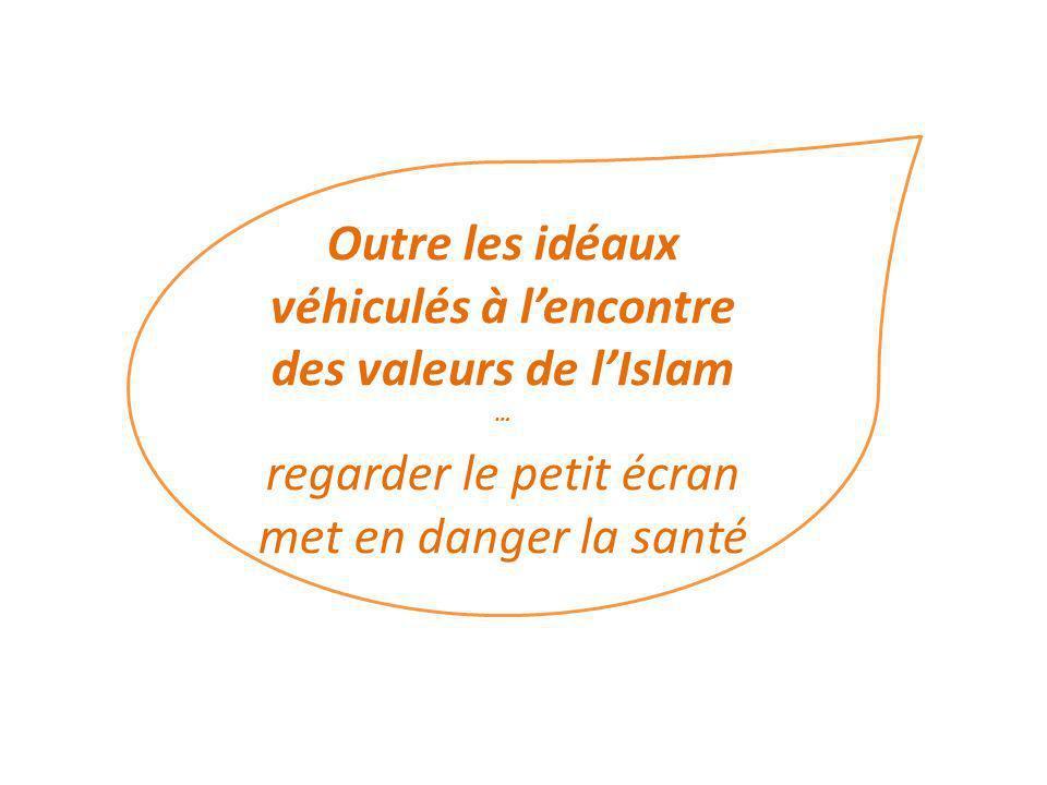 Outre les idéaux véhiculés à l'encontre des valeurs de l'Islam