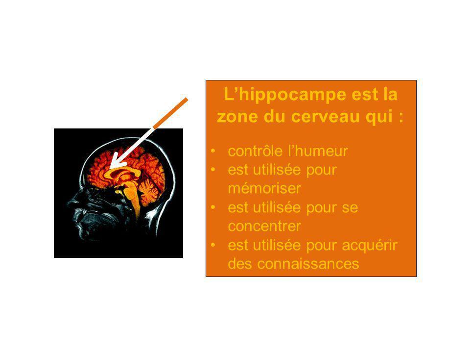 L'hippocampe est la zone du cerveau qui :