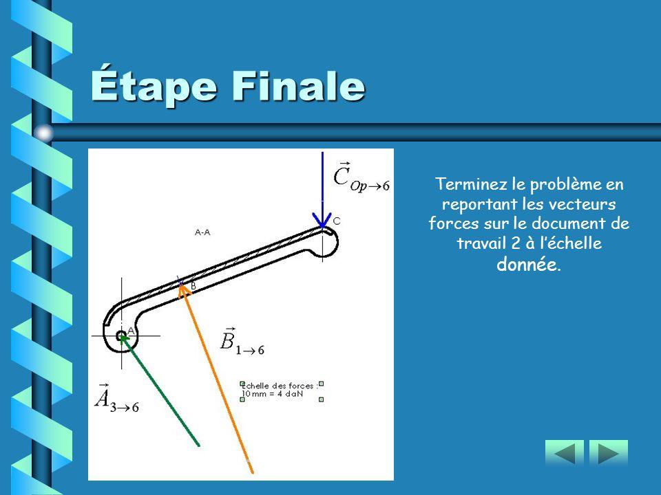 Étape Finale Terminez le problème en reportant les vecteurs forces sur le document de travail 2 à l'échelle donnée.