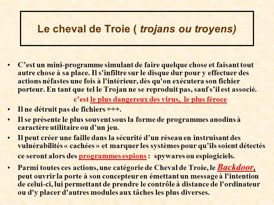 Le cheval de Troie ( trojans ou troyens)