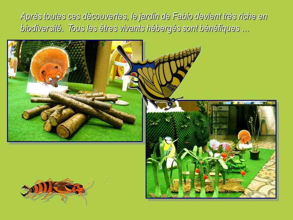 Après toutes ces découvertes, le jardin de Fabio devient très riche en biodiversité.