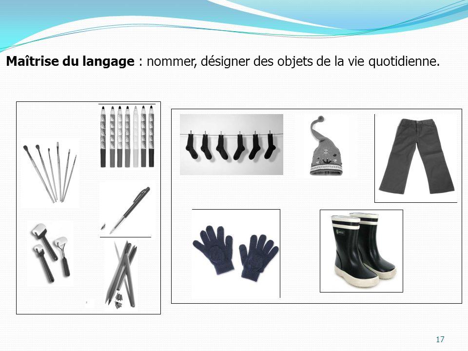 Maîtrise du langage : nommer, désigner des objets de la vie quotidienne.
