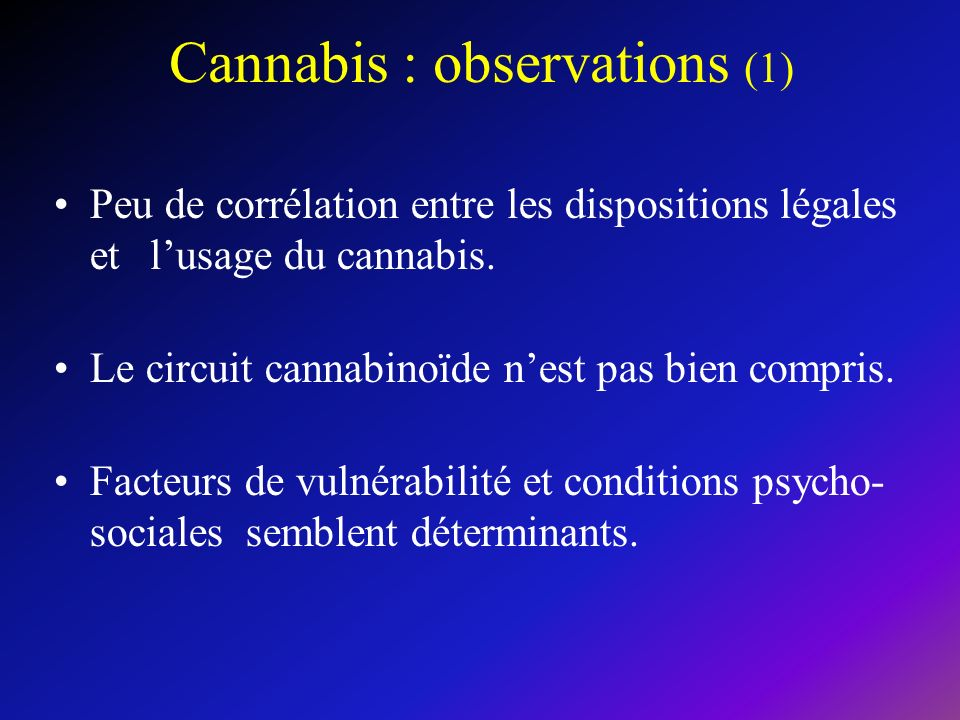 Cannabis : observations (1)