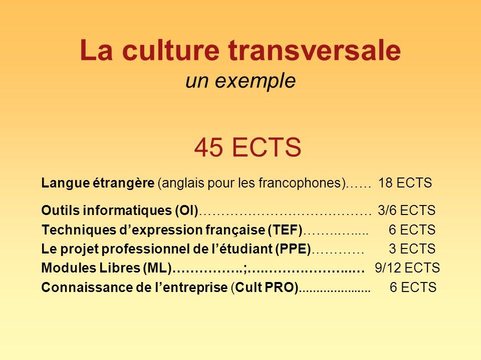 La culture transversale un exemple