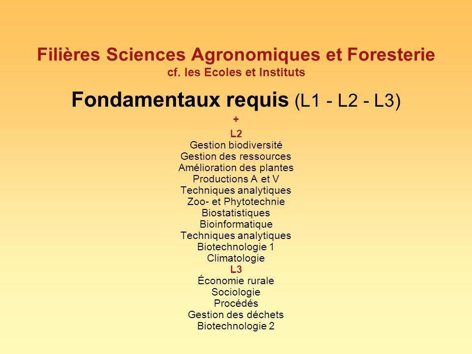 Fondamentaux requis (L1 - L2 - L3)