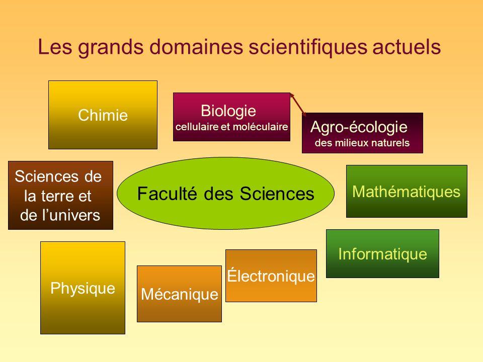 Les grands domaines scientifiques actuels