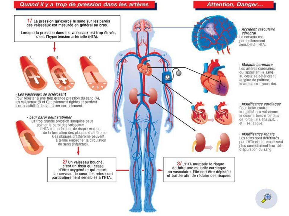 I – GENERALITES I-1 Rappels physiologiques K.MULLER