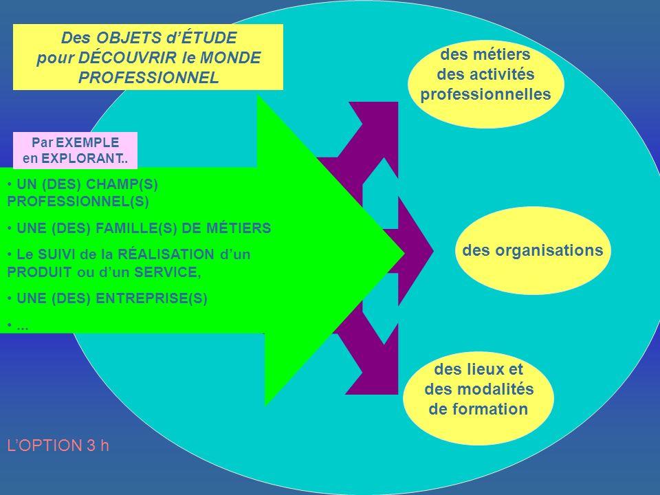 Des OBJETS d'ÉTUDE pour DÉCOUVRIR le MONDE PROFESSIONNEL